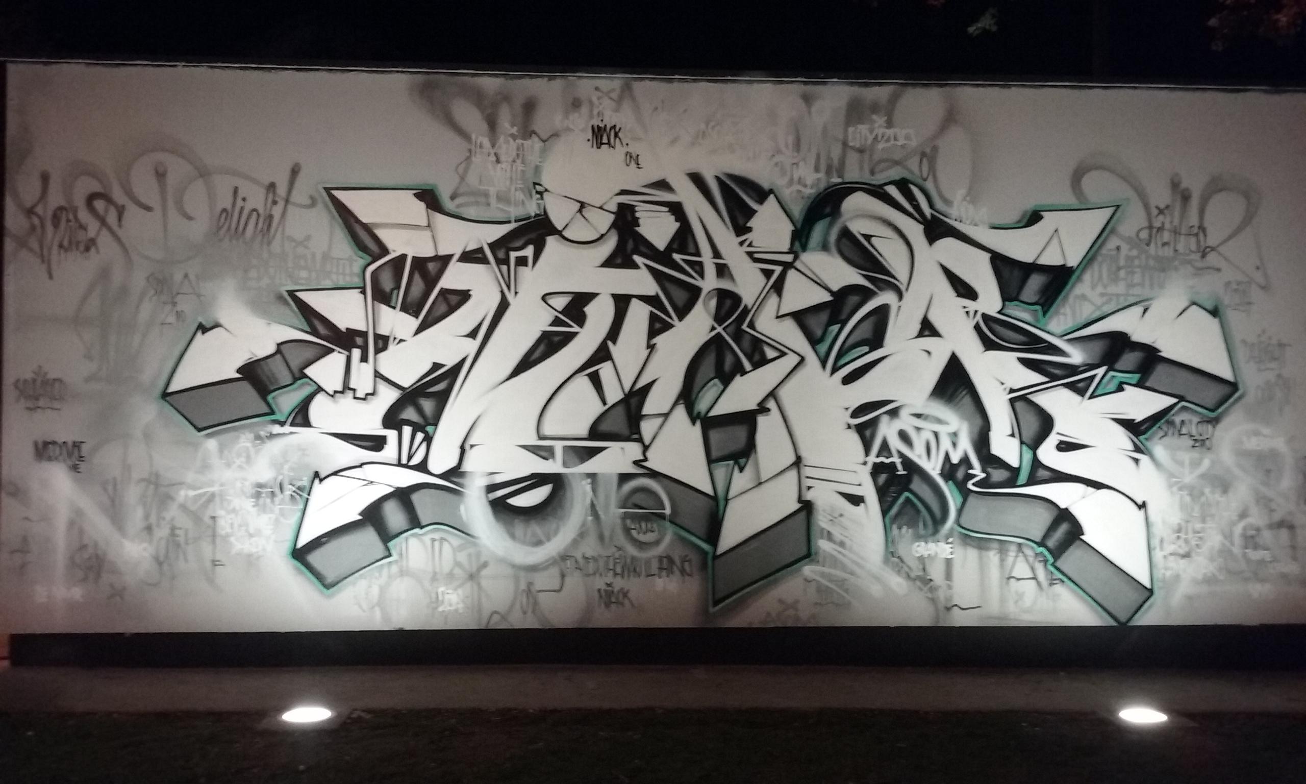 20170915_Niack_bynight_lemurepinal